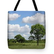 Tolworth Court Nature Reserve In Surrey Tote Bag