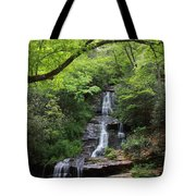 Tom Branch Falls - Gsmnp Tote Bag