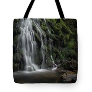Tom Gill Waterfall, Cumbria, England Tote Bag