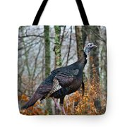 Tom Turkey Early Moning 1 Tote Bag