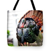 Male Turkey Tote Bag