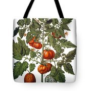 Tomato & Watermelon 1613 Tote Bag