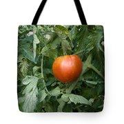 Tomato Plants In A Nebraska Garden Tote Bag