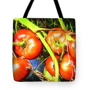 Tomatoes Hanging Like Grapes From Vines Go1 3711a3 Tote Bag