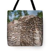 Tombs At Oxtankah Tote Bag
