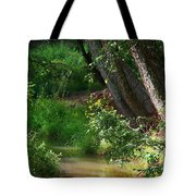 Toms Creek In Late Summer Tote Bag