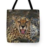 Tongue And Cheek Cheetah Tote Bag