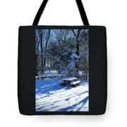 Too Cold To Picnic Tote Bag