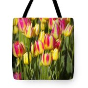 Too Many Tulips Tote Bag by Jeff Kolker