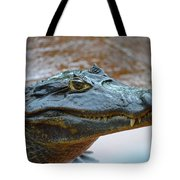 Toothy Gator Tote Bag