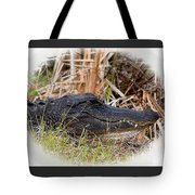 Alligator Toothy Grin 2 Tote Bag