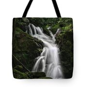 Top Of Mouse Creek Falls  Tote Bag