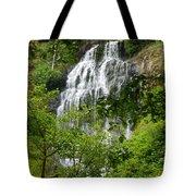 Top Of Munson Creek Falls Tote Bag