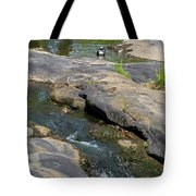 Top Of Noccalula Falls Tote Bag