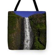 Top Of The Falls Tote Bag