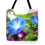Top Of The Morning Glories Tote Bag