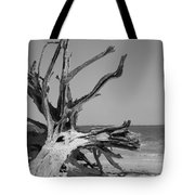 Toppled Tree Tote Bag