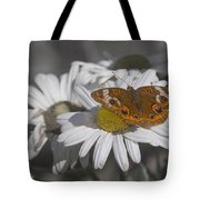 Topsail Butterfly Tote Bag