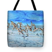 Topsail Skimmers Tote Bag