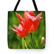 Toronto Tulip Tote Bag