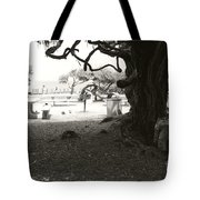 Torrey Pines Baggage Claim Tote Bag