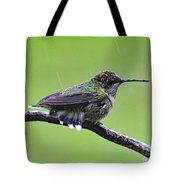 Totally Wet But Beautiful - Ruby-throated Hummingbird Tote Bag