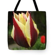 Touch Me In The Morning Tote Bag