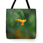 Touch Me Not Curve Tote Bag