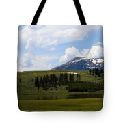 Touching Beauty Tote Bag
