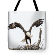 Touching Down Tote Bag