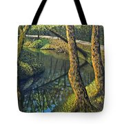 Tow Path Tote Bag by Don Perino