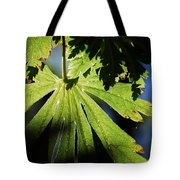 Toward The Secret Garden Tote Bag