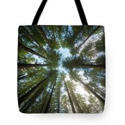 Towering Fir Trees In Oregon Forest State Park Tote Bag