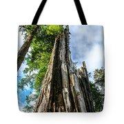 Towering Trees Tote Bag