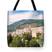 Town Of Tivoli Tote Bag