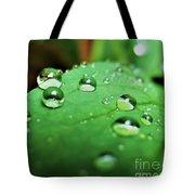 Traces Of Rain Tote Bag