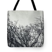 Traces Of Reality Tote Bag