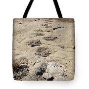 Tracks In The Desert 6 Tote Bag