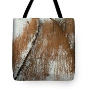 Tracks To The Past Tote Bag