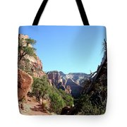Trail - Zion Park Tote Bag