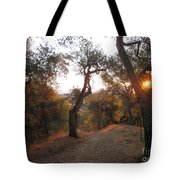 Trail At Sunrise Tote Bag