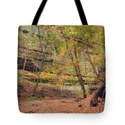 Trail In Tonty Canyon Tote Bag