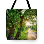 Trail Into Sunset Tote Bag