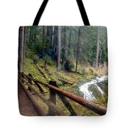 Trail Over Sol Duc Falls Bridge In Olympic National Park Tote Bag