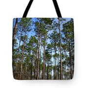 Trail Through The Pine Forest Tote Bag