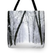 Trail Through The Winter Forest Tote Bag