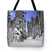 Trail Through Trees Tote Bag by Garry Gay