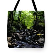 Trail To Chimney Top Tote Bag