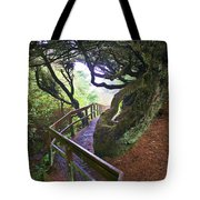 Trail To Copalis Beach Tote Bag