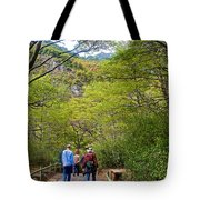 Trail To Waterfall In Vicente Perez Rosales National Park Near Puerto Montt-chile Tote Bag